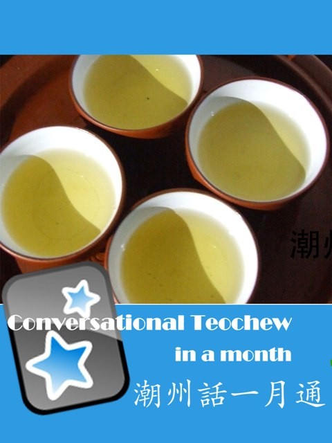 Conversational Teochew In A Month - Anki Flashcards (with