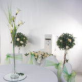 Wedding Package Lily Vase Centerpeice - Wedding Sparkle - wedding - event - hire