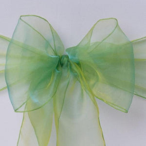 Apple green organza sash collect and return hire - Wedding Sparkle