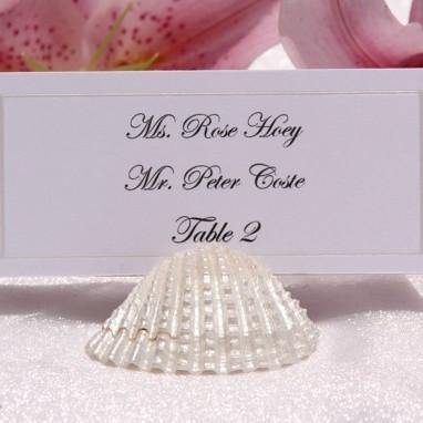 Pearlized Shell Place Card Holders - Gallery360 Designs