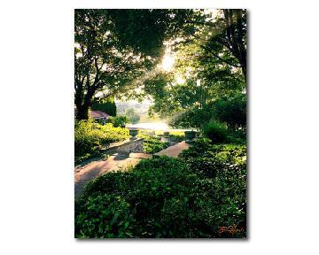Nature Photography, Art Print, Landscape Photography, Wall Art Print, Four Seasons Summer - Gallery360 Designs