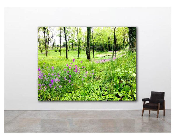 Nature Photography, Art Print, Botanical Photo, Landscape Photography, Wall Art Print, Four Seasons Spring - Gallery360 Designs