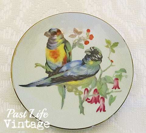 Exotic Birds Small Bone China Dish Saucer Vintage 1950 UCOG Japan
