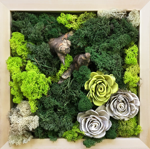 DIY Mossart Kit with Flowers and Driftwood