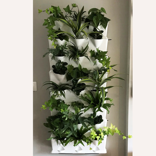 Vertical 8 - Tropical Green Wall