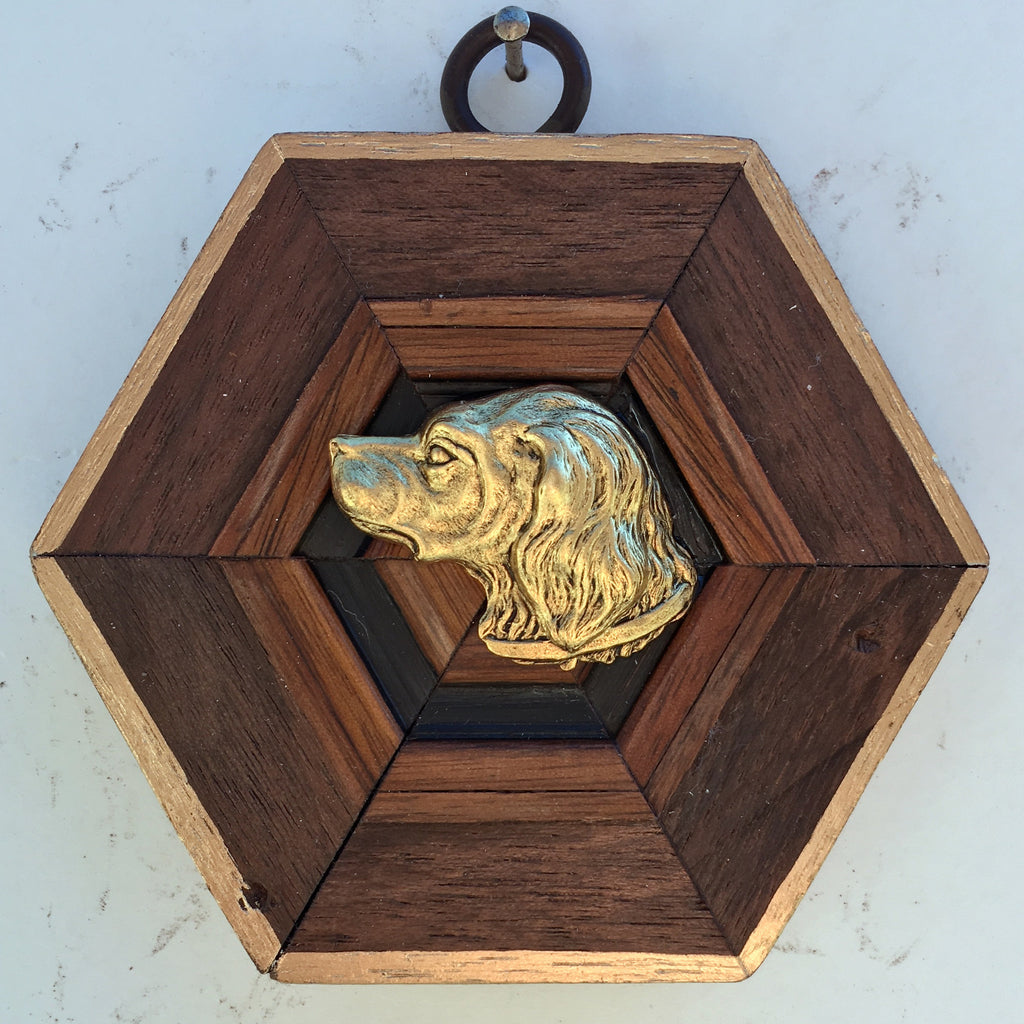 Wooden Frame with Handsome Dog (3.5