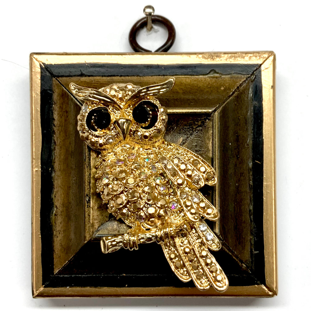 Lacquered Frame with Sparkle Owl Brooch (2.75