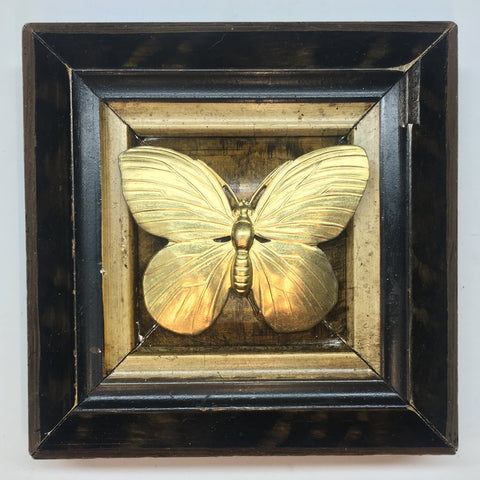 Lacquered Frame with Butterfly (3.75