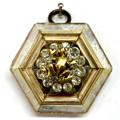 Mother of Pearl Frame with Frog on Brooch (2.5