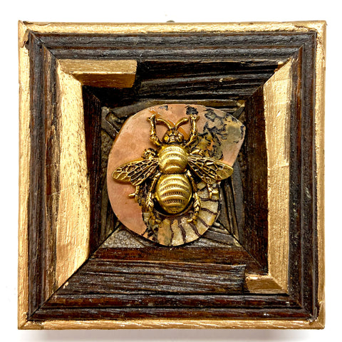 Wooden Frame with Grande Bee on Ammonite (3.25