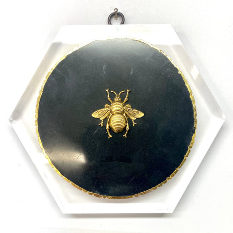Lucite Frame with Grande Bee on Agate (7
