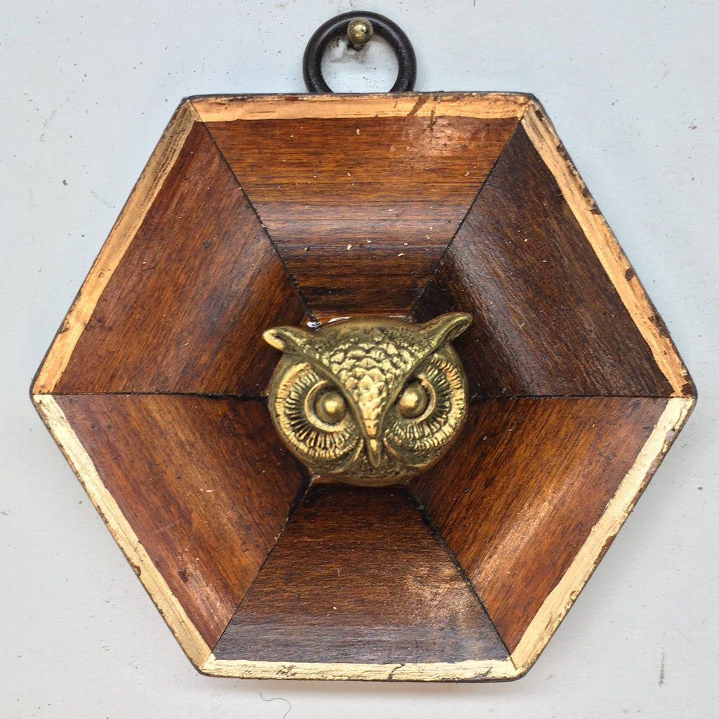 Wooden Frame with Owl (3.25