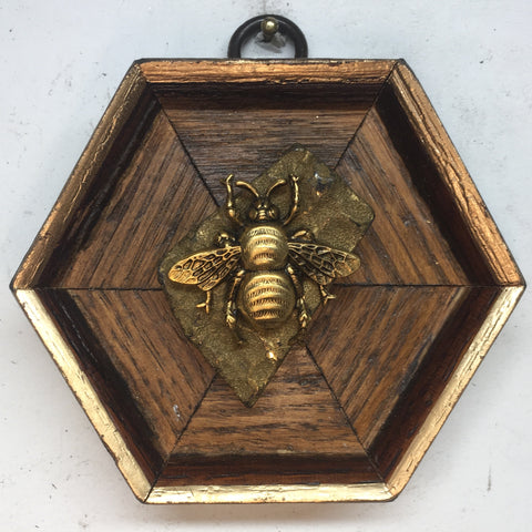 Wooden Frame with Grande Bee on Pyrite (3.5