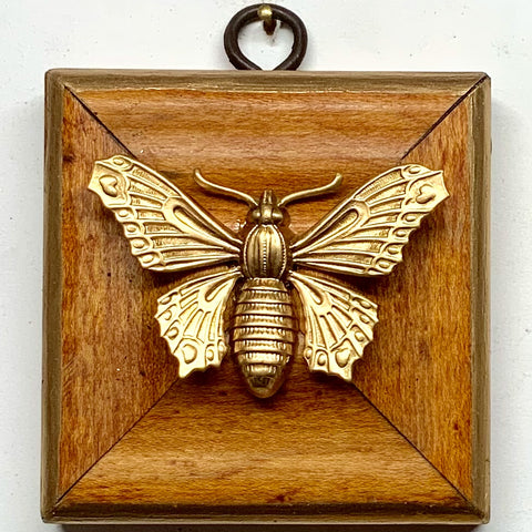 Wooden Frame with Butterfly (3
