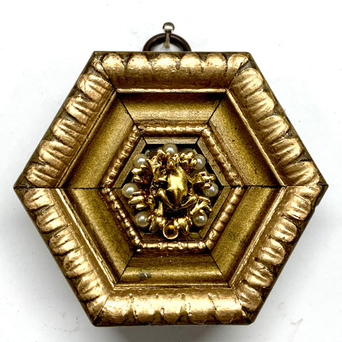 Gilt Frame with Frog on Brooch (3