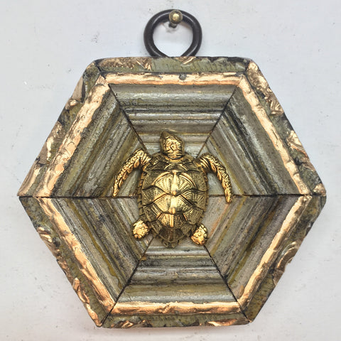 Painted Frame with Turtle (3
