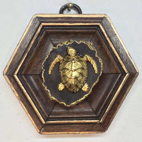 Wooden Frame with Turtle (3.25