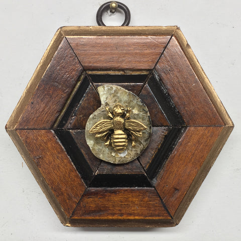 Wooden Frame with Napoleonic Bee on Ammonite (3.75