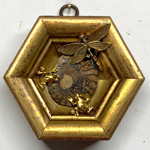Gilt Frame with Dragonfly and Frog on Ammonite (4