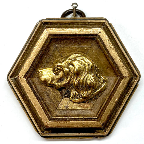 Gilt Frame with Handsome Dog (3