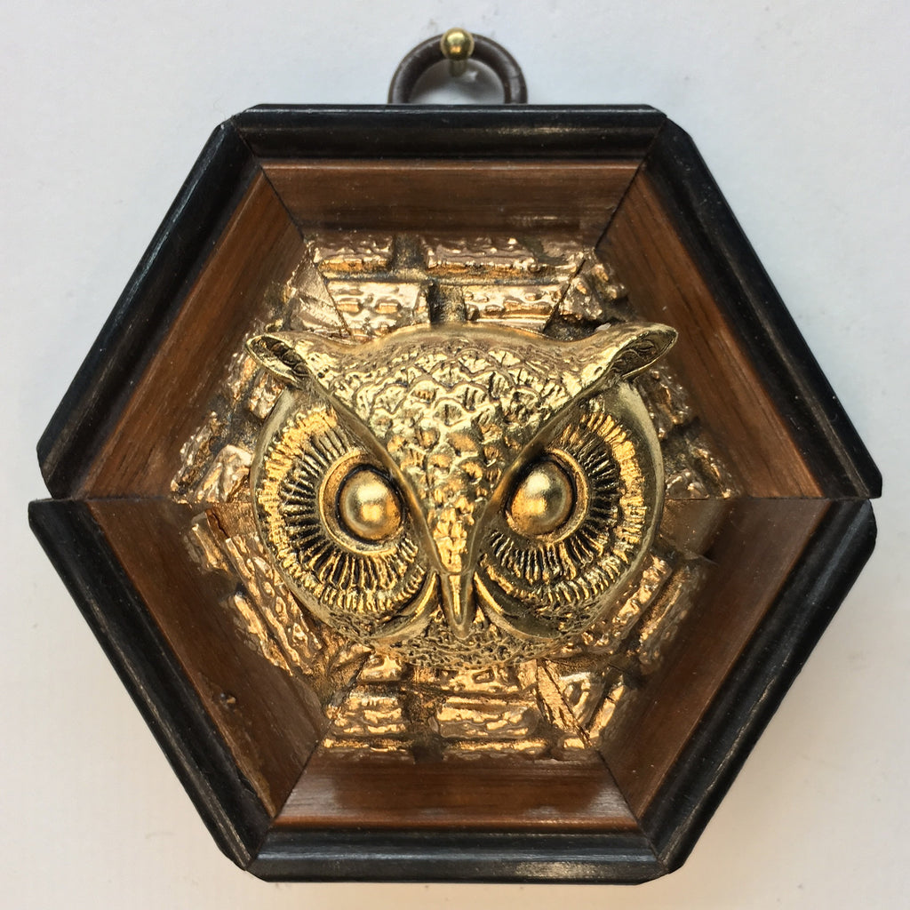 Gilt Wooden Frame with Owl (3.25