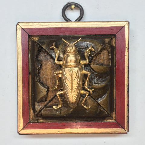 Lacquered Frame with Beetle (2.75