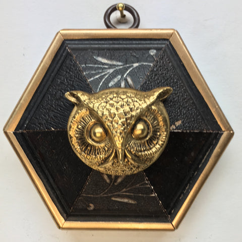 Dark Gilt Frame with Owl (3.5
