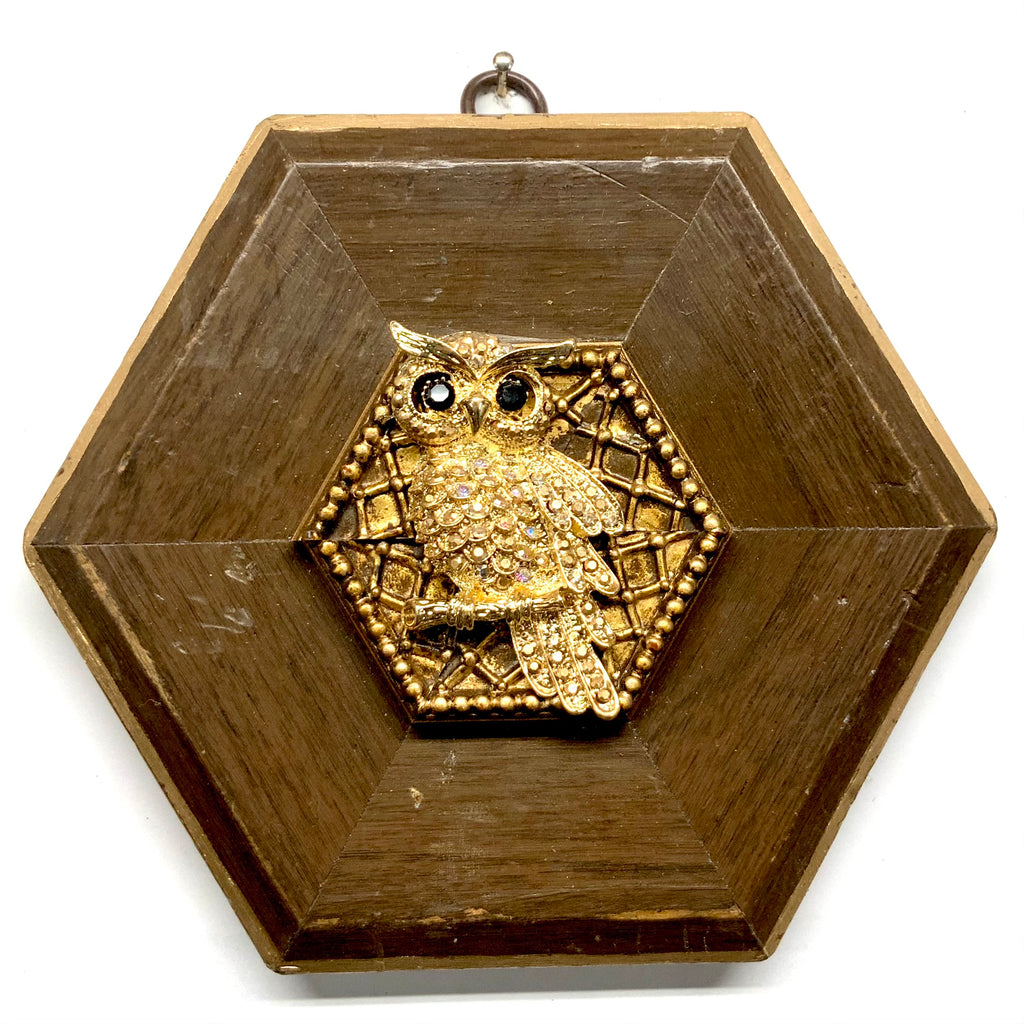 Wooden Frame with Sparkle Owl (6