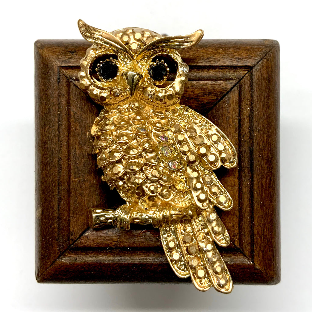 Wooden Frame with Sparkle Owl (2.25