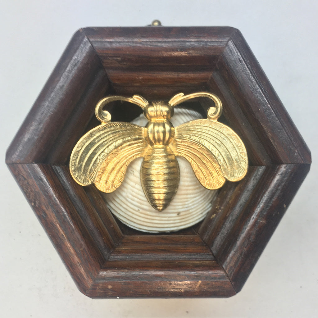 Wooden Frame with Bee on Shell (3