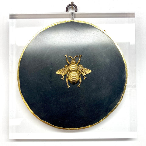 Lucite Frame with Grande Bee on Agate (6
