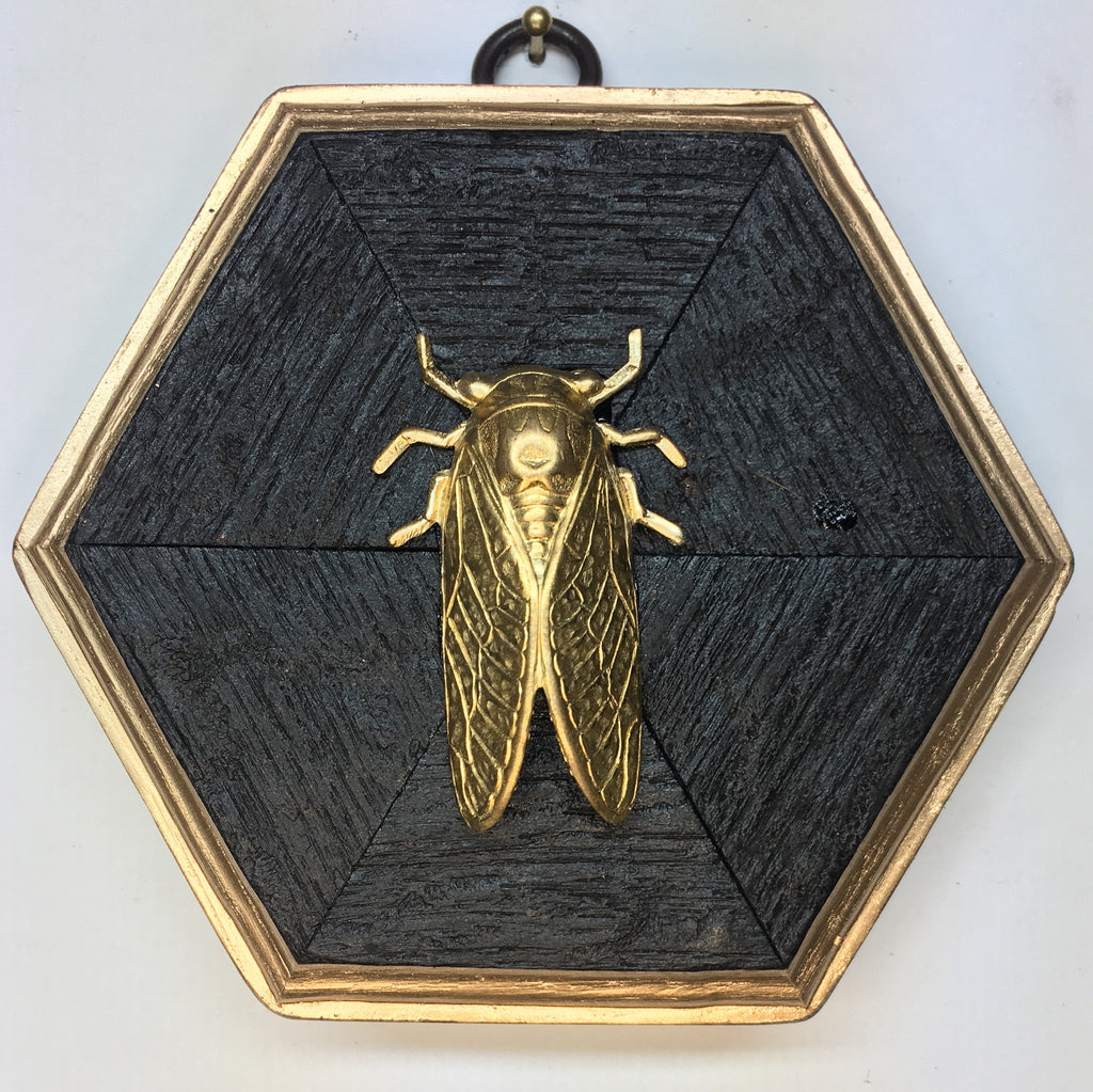 Bourbon Barrel Frame with Cicada (4.75