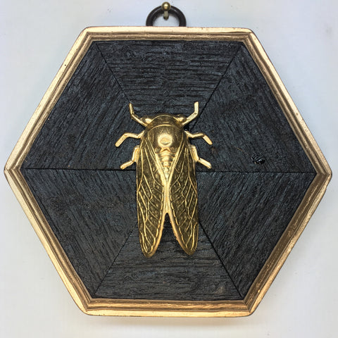 Large Bourbon Barrel Frame with Cicada (4.5-5
