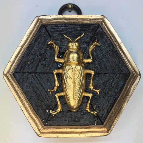 Bourbon Barrel Frame with Beetle (3.25