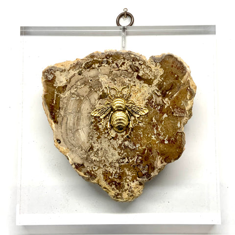 Lucite Acrylic Block with Grande Bee on Petrified Wood Piece (6