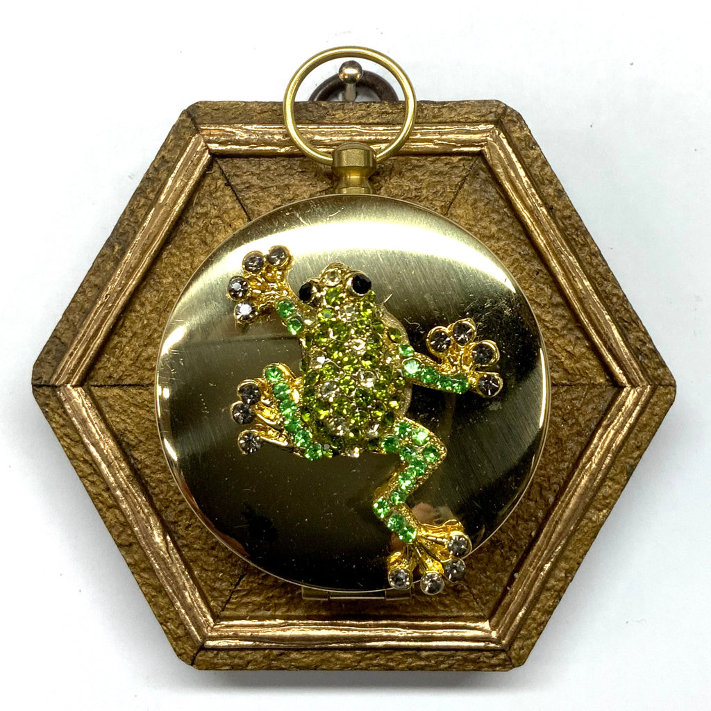 Painted Frame with Frog Brooch on Compass (3.5