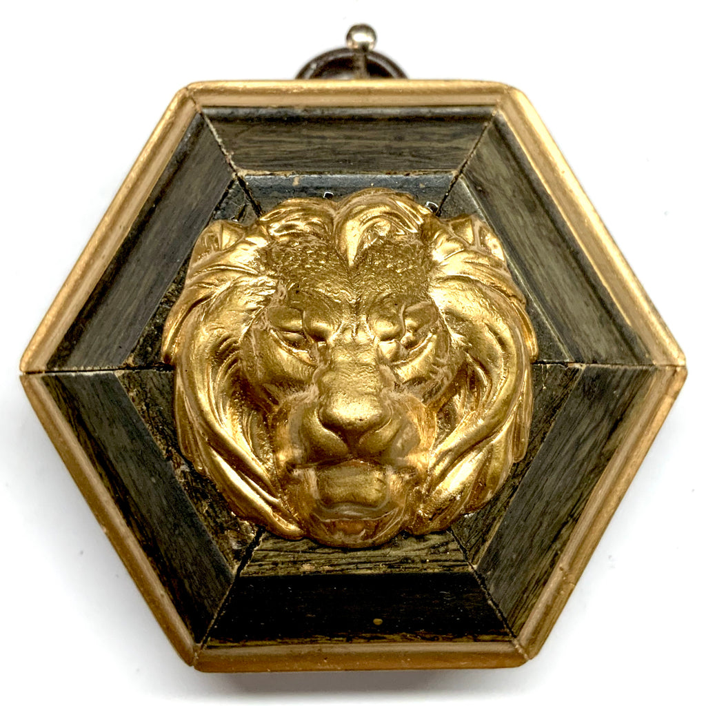 Painted Frame with Lion (2.75