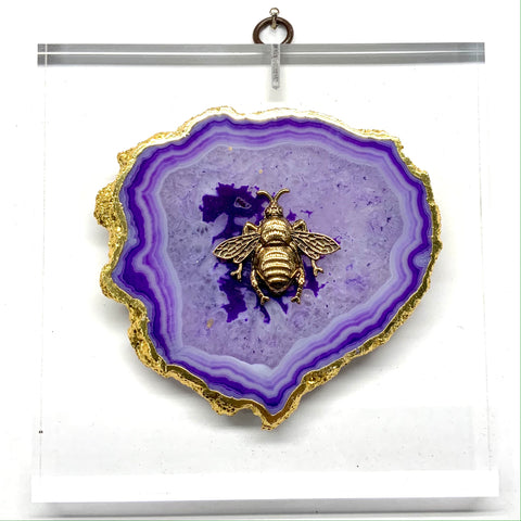 Lucite Acrylic Frame with Grande Bee on Agate (6
