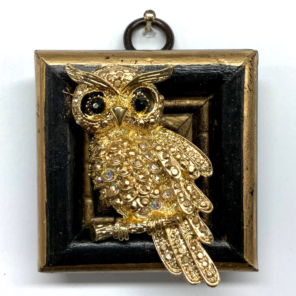 Lacquered Frame with Owl Brooch (2.25