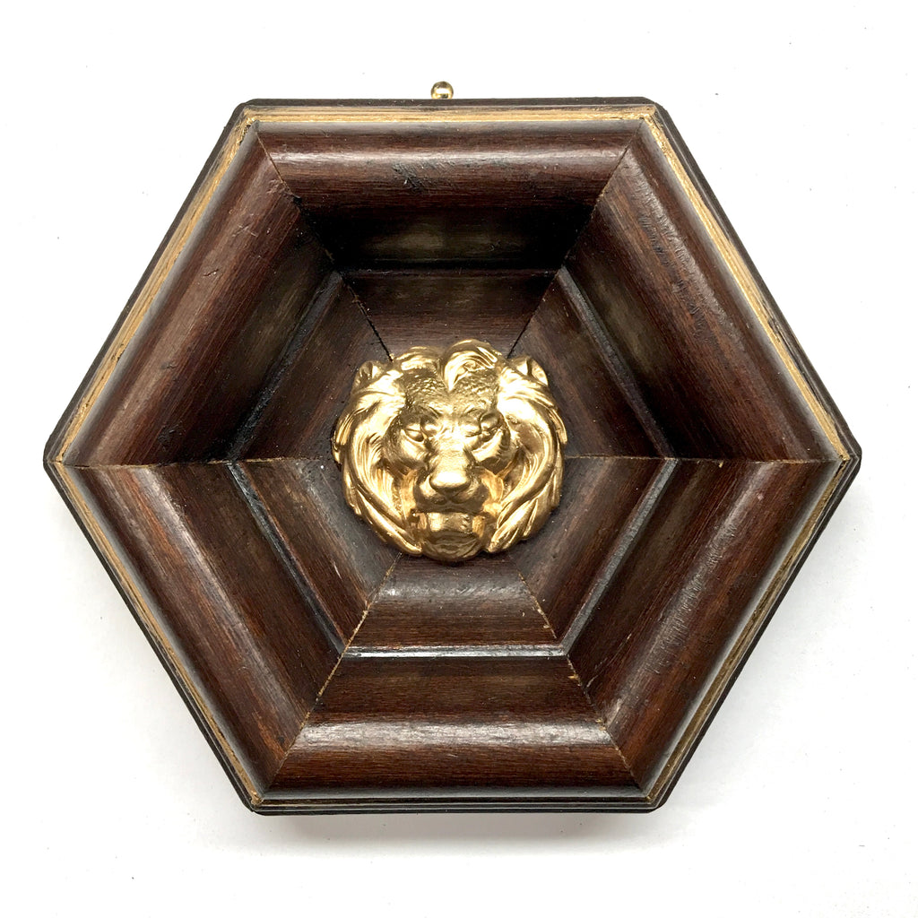 Wooden Frame with Lion (4.5
