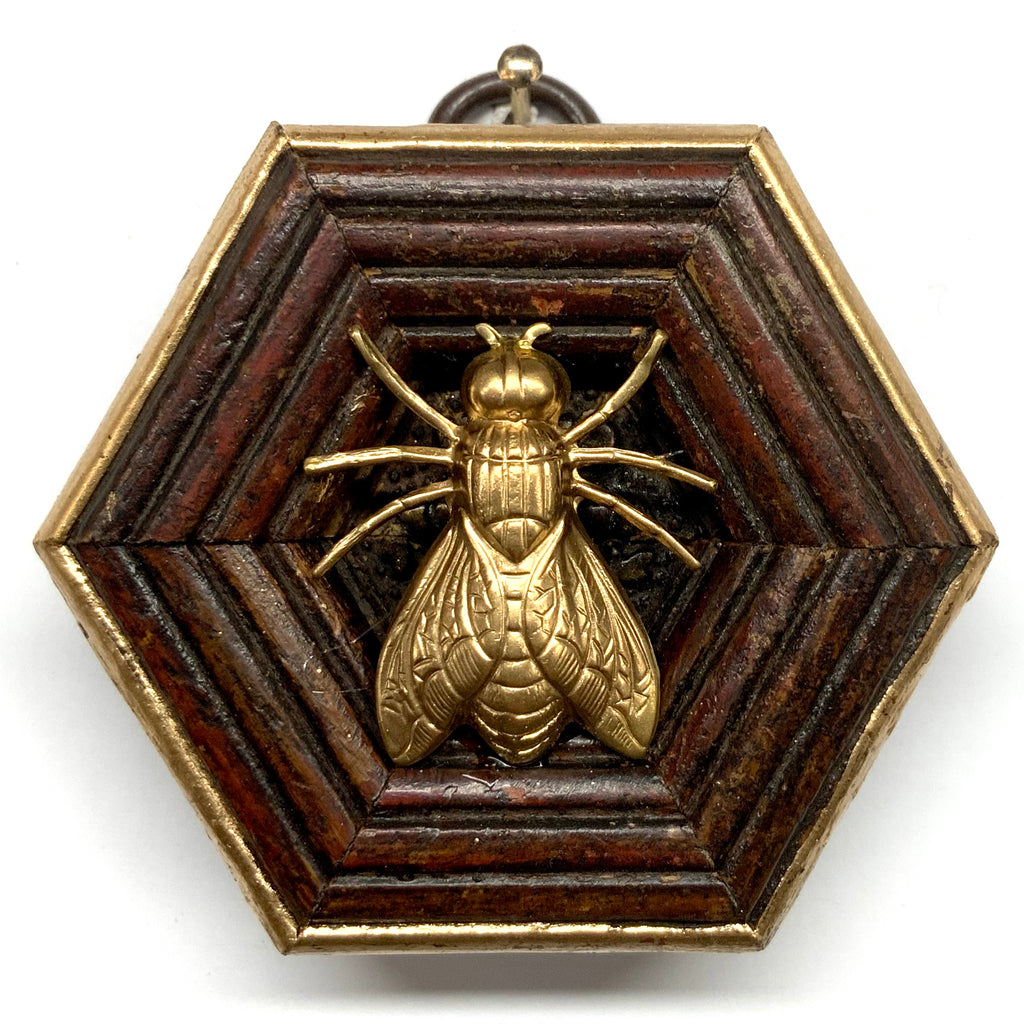 Wooden Frame with Fly (2.5