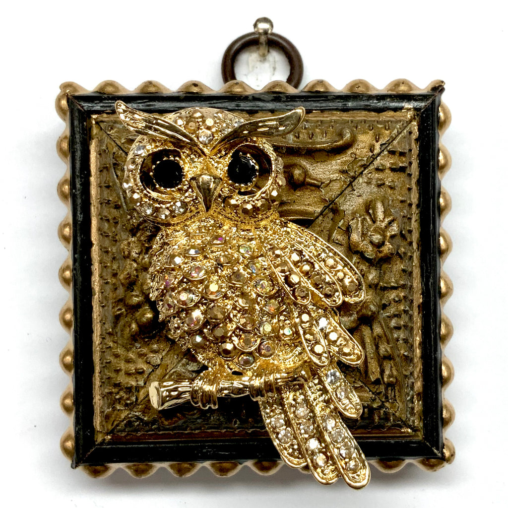 Lacquered Frame with Sparkle Owl Brooch (2.5