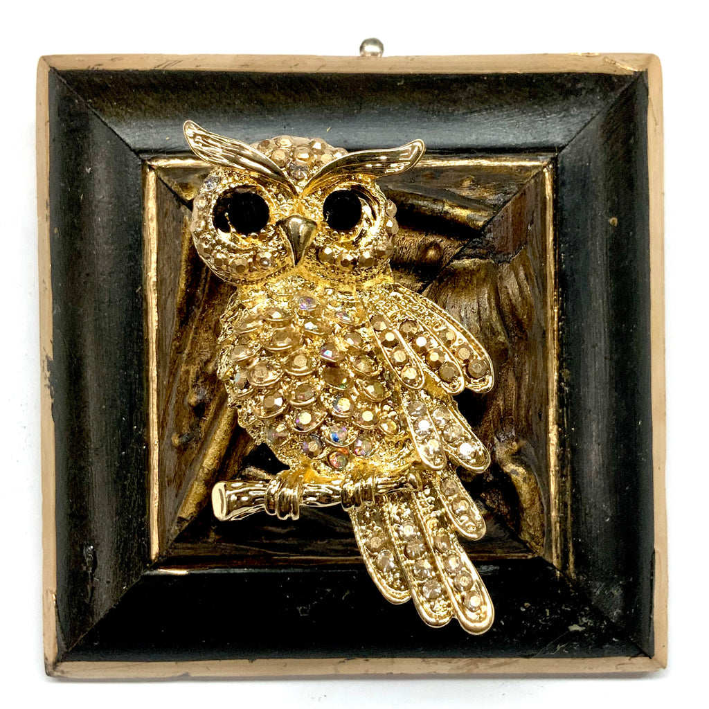 Lacquered Frame with Sparkle Owl Brooch (3.25
