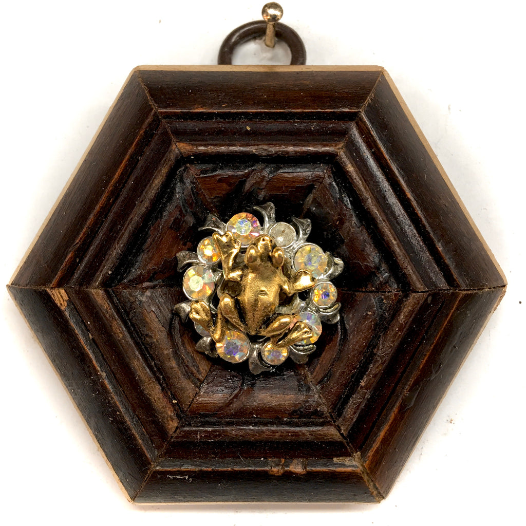 Wooden Frame with Frog on Brooch (2.75