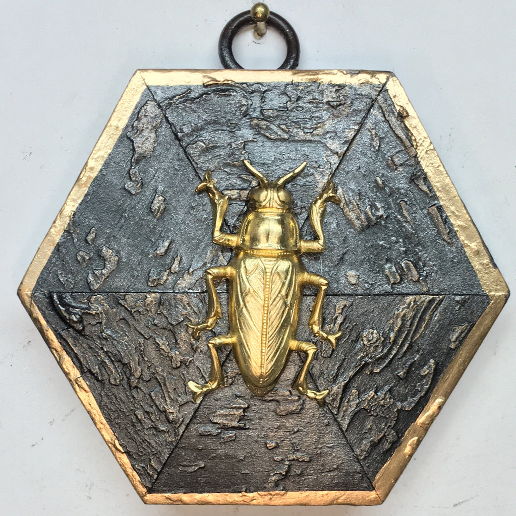 Painted Frame with Beetle (3.5