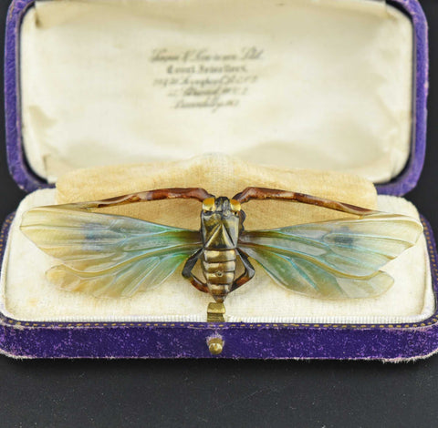 ONHOLD Antique Art Nouveau Carved Cicada Insect Brooch