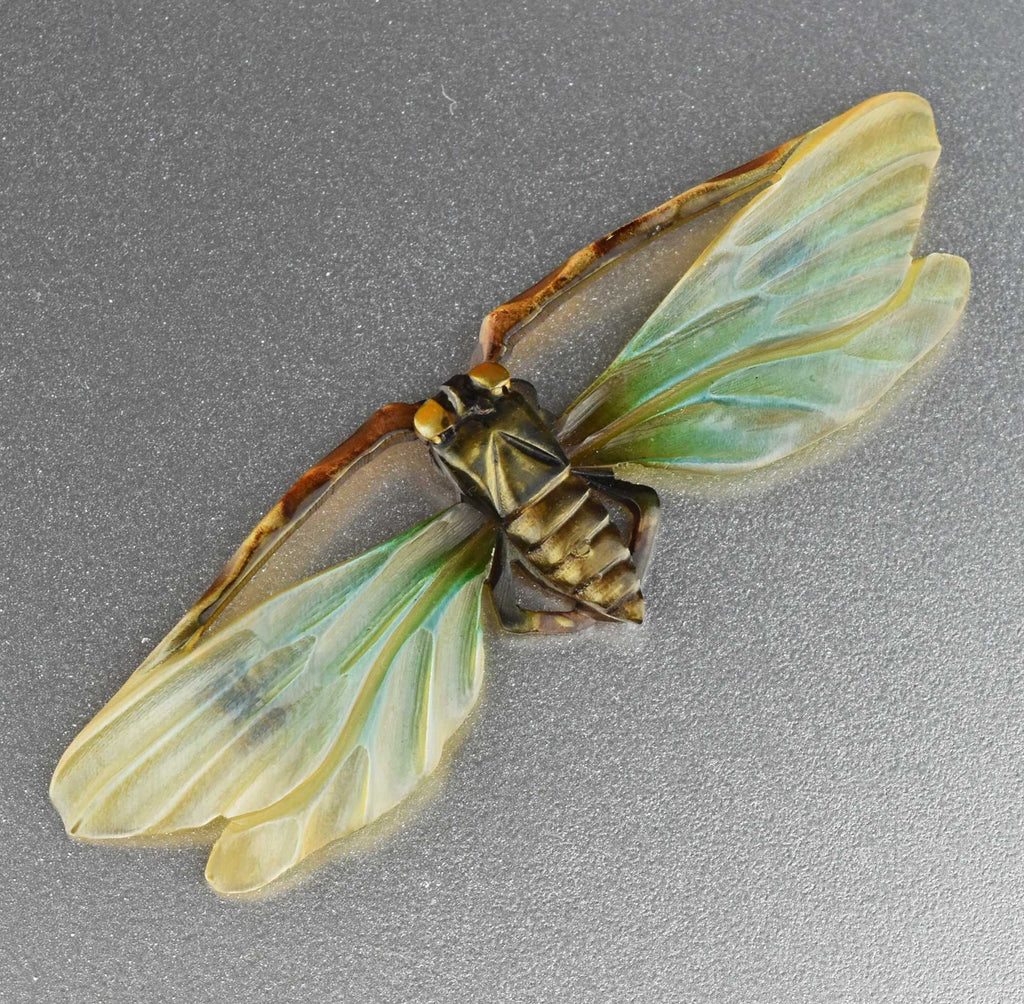 ONHOLD Antique Art Nouveau Carved Cicada Insect Brooch - Boylerpf