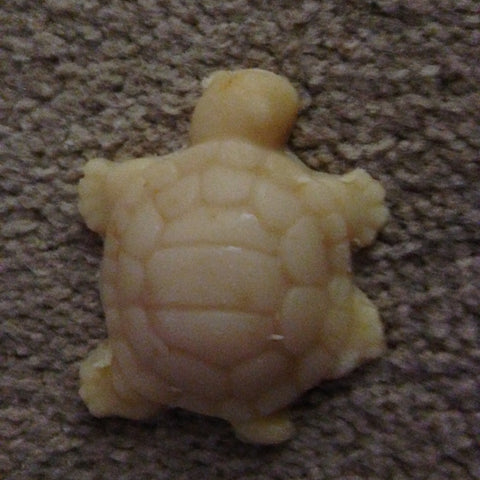 Turtle soap - Goat Milk Etc.