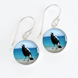 Australian Magpie Meniscus Earrings