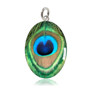 Peacock Feather Meniscus Charm | Amanda Jo Jewellery